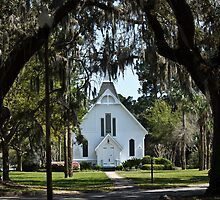 Beautiful old church in the south by Brenda  Meeks