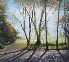 Backlit Trees at Malahide Castle by Geraldine M Leahy