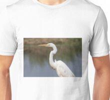 Observing The Ponds Unisex T-Shirt