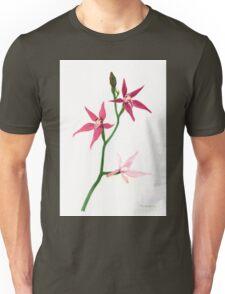 Pink Fairy Orchid (Caladenia latifolia) Unisex T-Shirt
