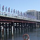 Flags at Darling Harbour by Judy Woodman