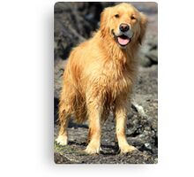 I've been swimming!! Canvas Print