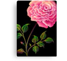 Large Rose in the French Style Canvas Print
