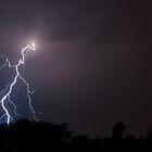 Lightning Fast by Marc  Rossmann
