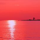 Raspberry Sunset by Jarede Schmetterer