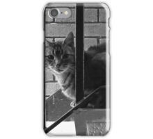 Freedom For Pickles iPhone Case/Skin