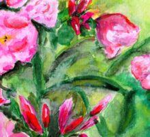 Pink Oleander Sticker