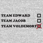 Team Edward, Team Jacob, Team Voldemort by FrogGirl