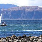 Off the West Coast of Scotland by Braedene