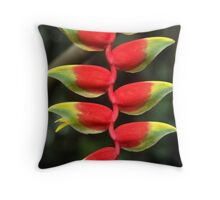 In lines Throw Pillow
