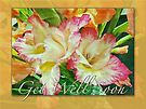 Textured Gladioli Get Well Card by MotherNature