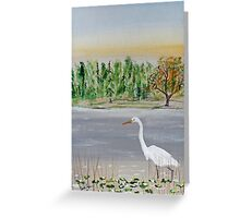 Egret Breakfast Prowl Greeting Card