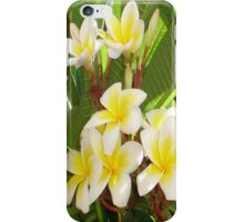 White and Yellow Frangipani Flowers with Leaves in Background  iPhone Case/Skin