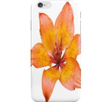 Coral Lily on White iPhone Case/Skin