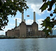 Battersea Power Station( pihk floyd pig) no.3 by Tim Healy