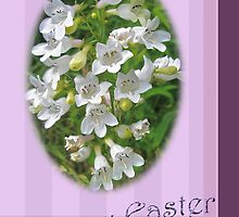 Happy Easter Card - Foxglove Beardtongue Wildflowers by MotherNature