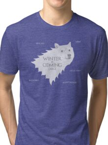 House Doge - Winter Is Coming Tri-blend T-Shirt
