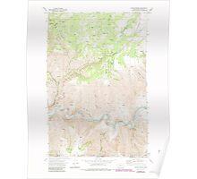 USGS Topo Map Washington State WA Fields Spring 241137 1971 24000 Poster