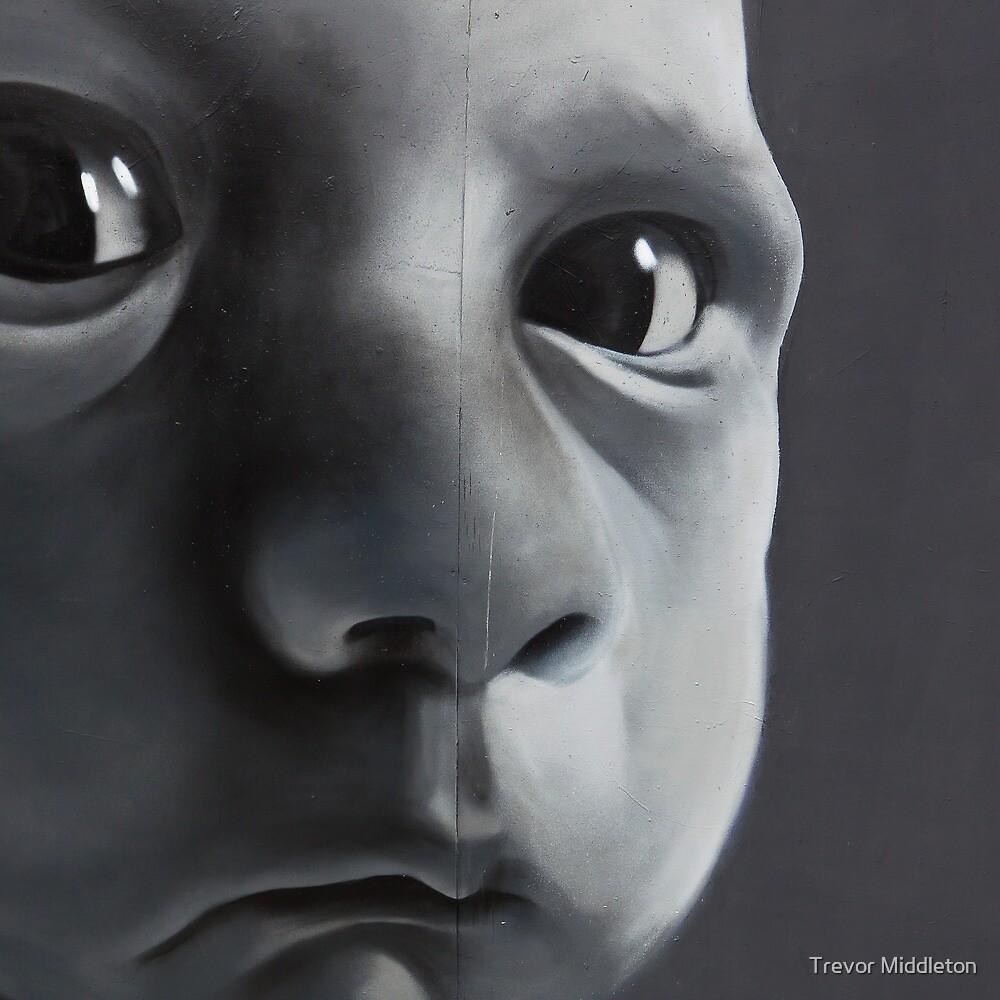 Graffiti Baby by Trevor Middleton