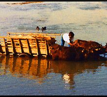 Bathing In The Rapti River by Karl Willson