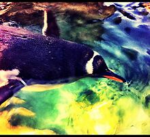 Penguin by Sookie Sookie