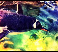 Penguin by Sookie Sookie