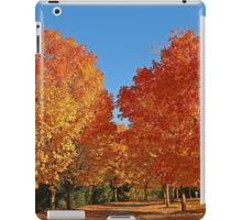 A fall spectacular of colors!! iPad Case/Skin