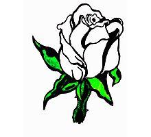 White flower,Green Stem Photographic Print
