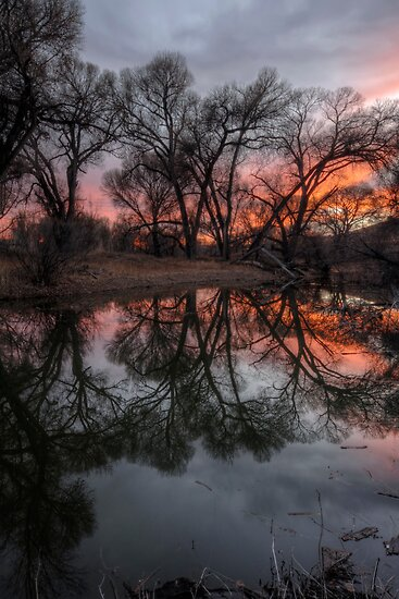 Reflect A Row by Bob Larson