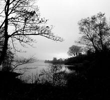 The Tranquility Of Lake Gartan by Fara