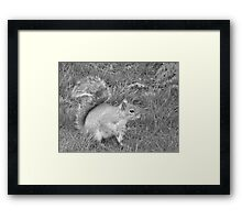 is this my best side? Framed Print