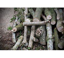 Wood Pile Photographic Print