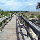 The Boardwalk by Kristy  Dorris