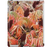 A fence of nature. iPad Case/Skin