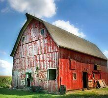 Suzie's Barn by Nadya Johnson