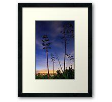 Twilight at the beach  Framed Print