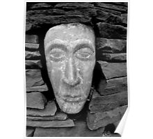 Stone Face By Jonathan Green Poster