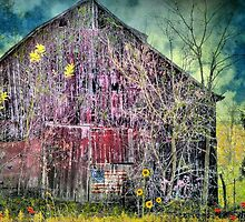 Old Red Rickety by Donnie Voelker
