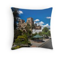 Why Do I Live Here? Throw Pillow