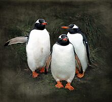 Welcoming committee  by hartpix