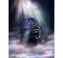 Raccoon Spirit Photographic Print