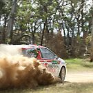 Scouts Rally SA 2015 - ARC Leg 3 - Eli Evans by Stuart Daddow Photography