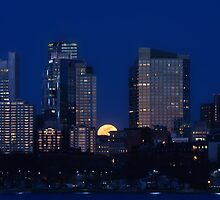 Pink moon, blue city by Owed to Nature