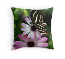 Zebra Longwing on a Daisy  Throw Pillow
