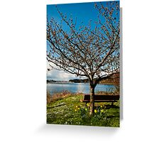 Olympia's East Bay Waterfront Greeting Card