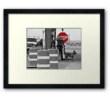 Border Check Framed Print