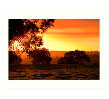 Summer Sunset Art Print