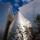 Disney Hall #1 by Rebecca Dru
