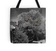 Gleaning for Oranges #1:Kathy in the tree Tote Bag