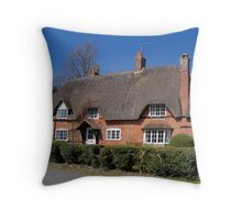 Redbrick Thatch Throw Pillow
